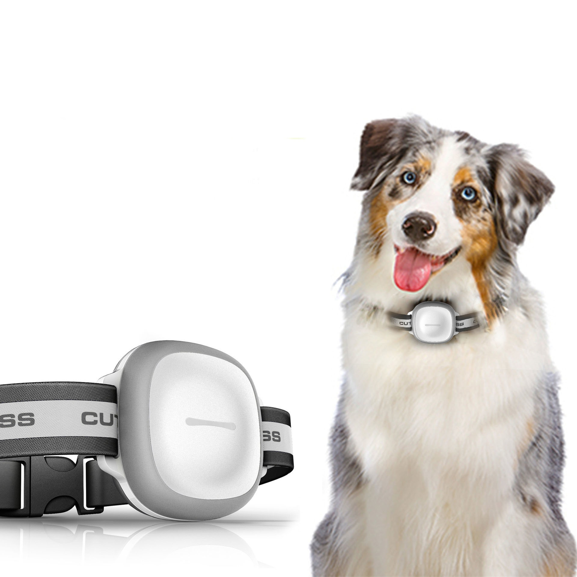 Pet Intelligent GPS Locator Dogs and Cats Anti Lost Device to Find Dogs