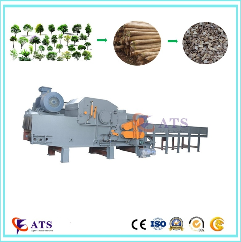 Electric Motor Drum Type Wood Chipper with Ce SGS