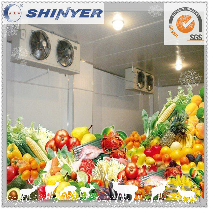 Modular Cold Storage for Fresh Vegetables and Fruits