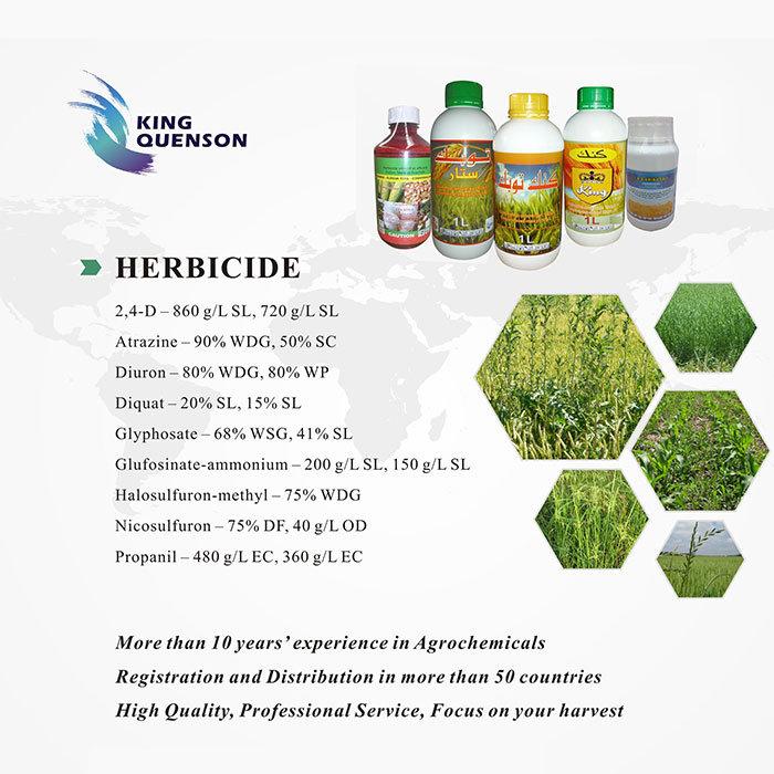 King Quenson Factory Price Herbicide List