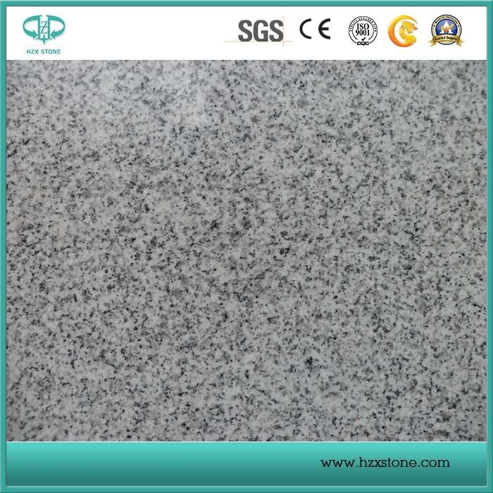 Grey Granite/G603/Granite Tile/Granite Slab/Slabs/ Granite