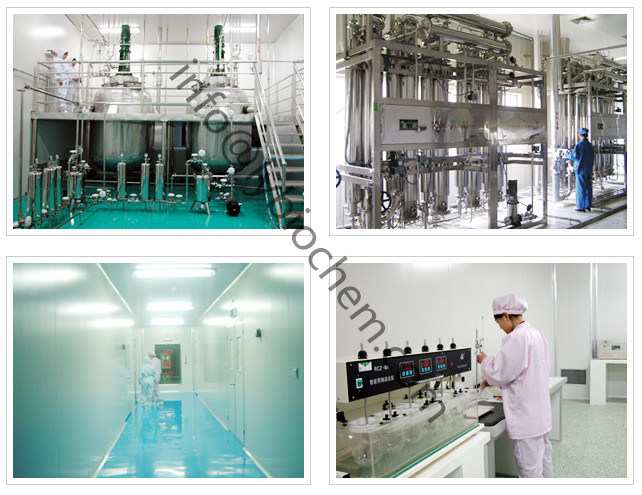 Manufacturer High Purity 9004-61-9 Hyaluronic Acid / Sodium Hyaluronate