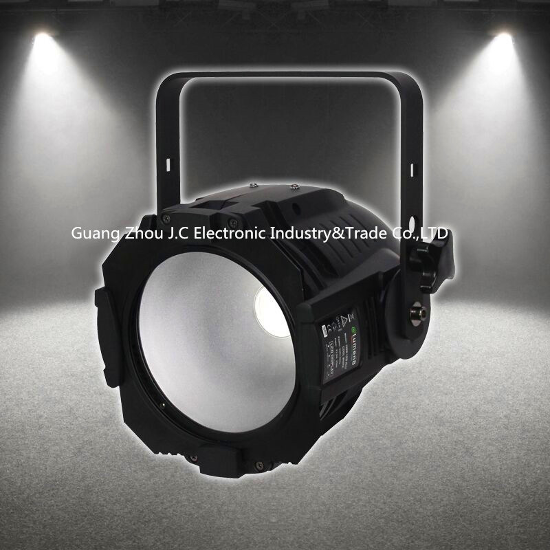 100W Cw+Ww COB PAR Light for Party Stage DJ
