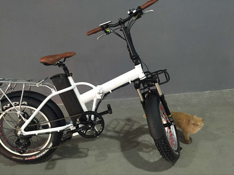 Hot Sale Folding Electric Bike with 4.0inch Fat Tyre Best Seller of Folding Ebike with High Quality