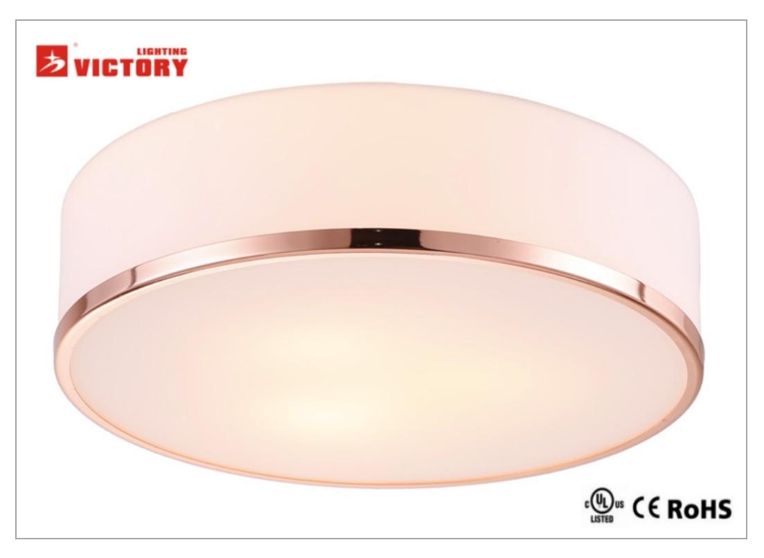 Hot Sale Modern Simple Round LED Popular Ceiling Light Lamp