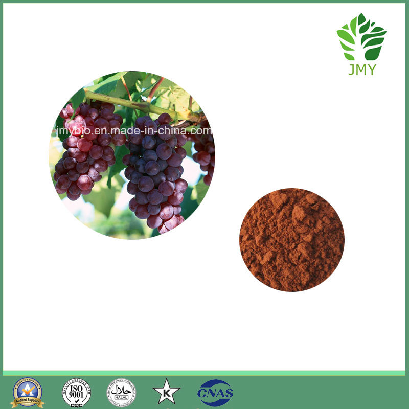 High Quality 5% Resveratrol, 25%  Polyphenols Grape Skin Extract