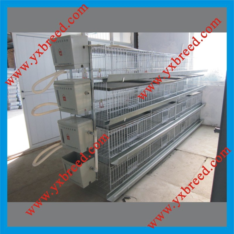 China Chicken Broiler Battery Cage Photos & Pictures