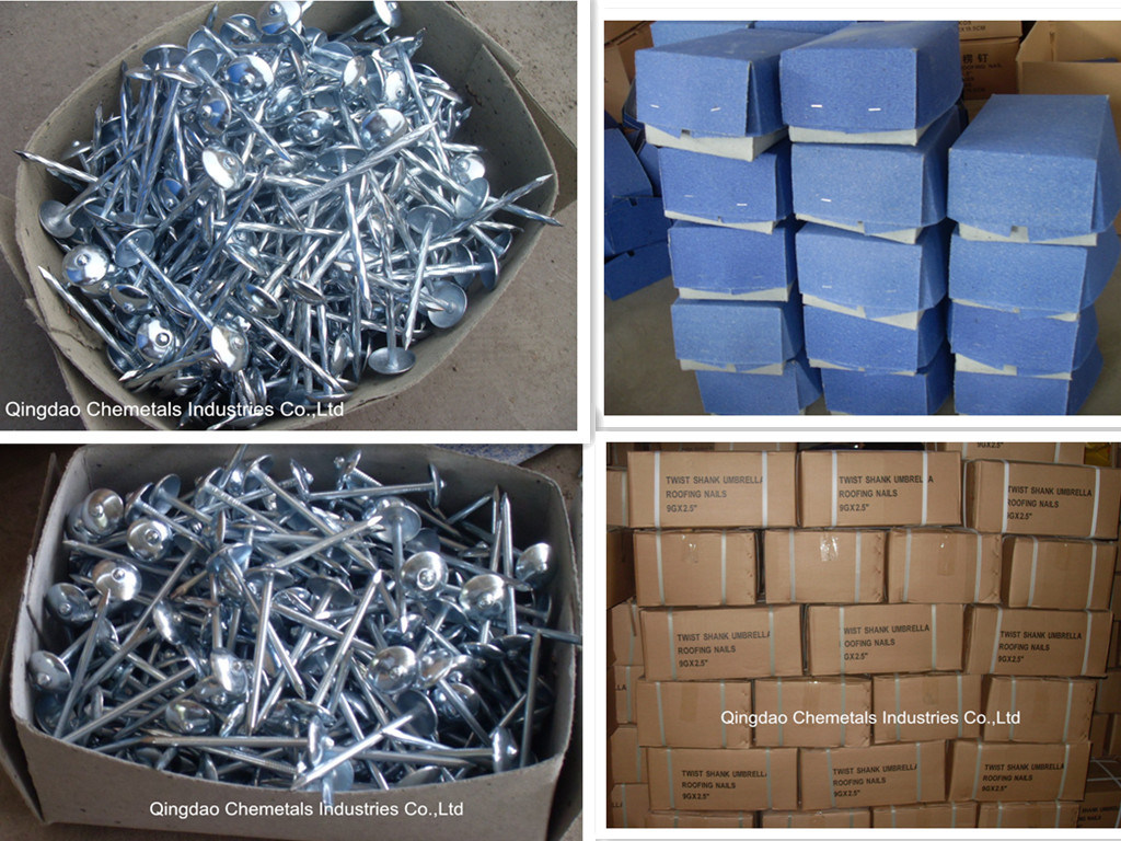 Galvanized Twist Shank Umbrella Head Roofing Nails Smooth Shank Umbrella Head Roofing Nails Common Nails