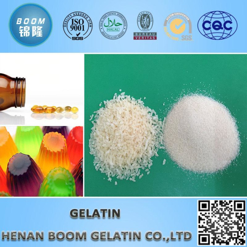 Edible / Pharmaceutical Gelatin with Halal Certificate