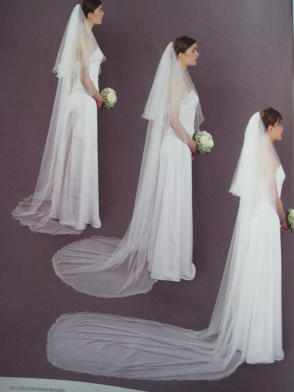 Wedding veils for Long veil wedding dresses