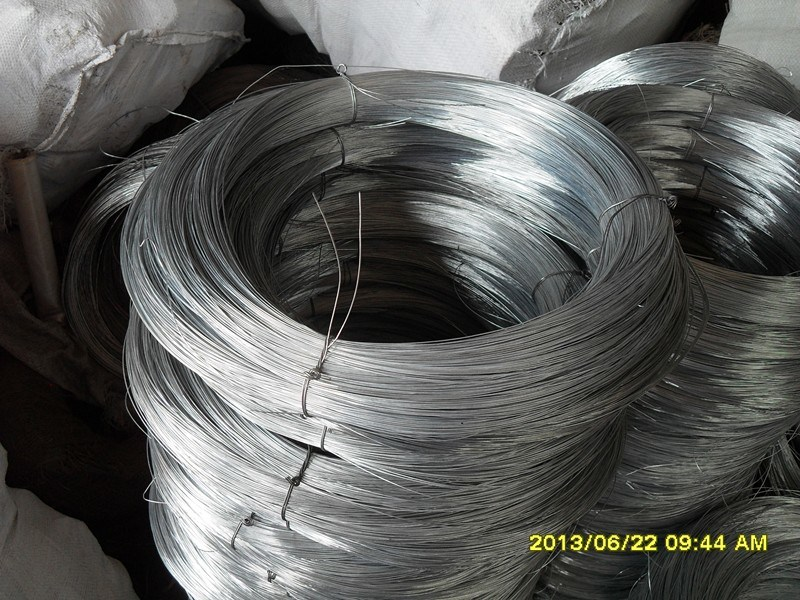 Galvanized Iron Wire Made in China Is on Hot Sale