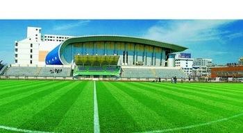 High Quality Soccer Feild Artificial Grass