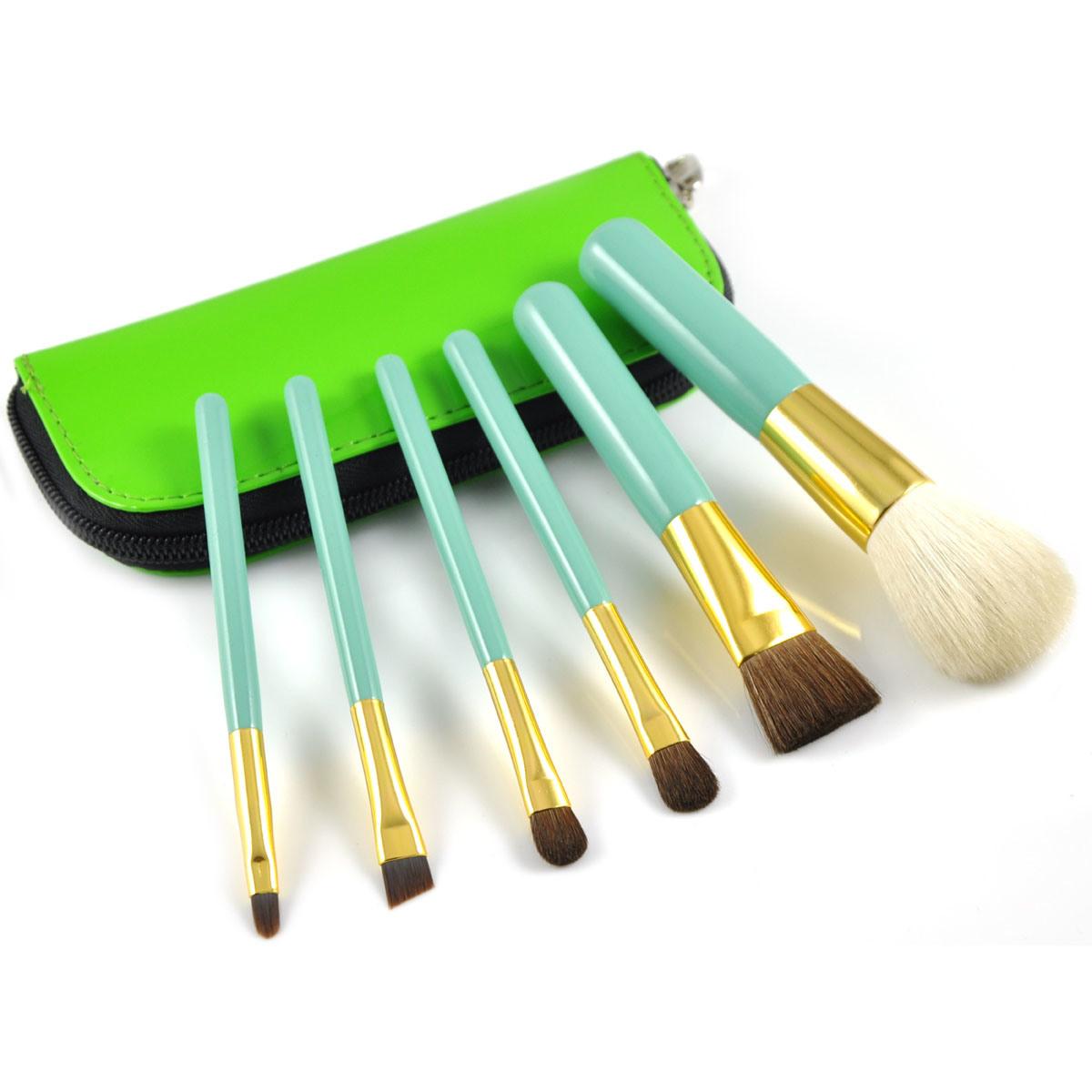Shiny Color Portable Beauty Kits Makeup Brush Set