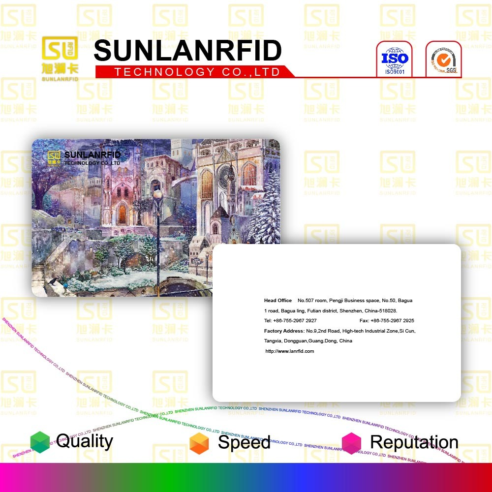 China Top Ten Selling Products RFID Smart Card (SL-1006)