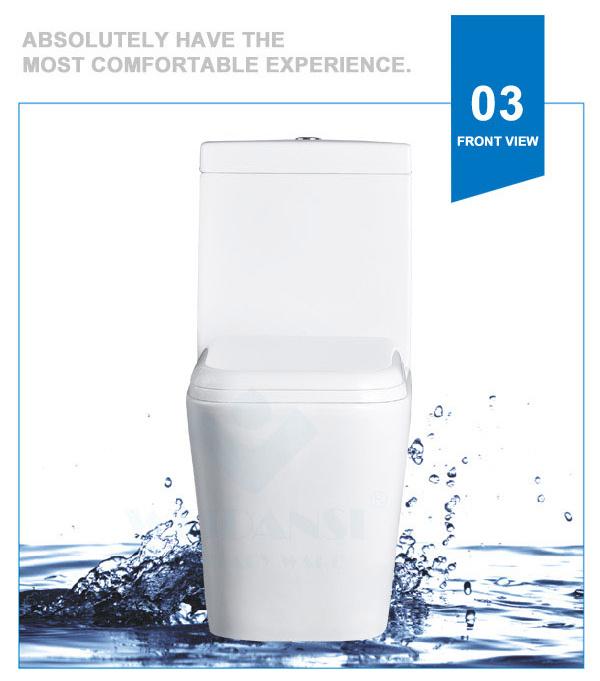 Weidansi Ceramic Wash Down S-Trap One Piece Toilet (WDS-T6106)