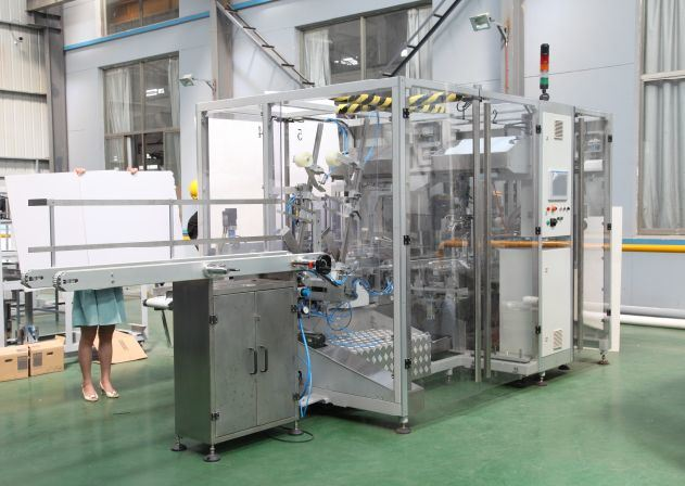 Automatic Case Packing Machine (AYZX Series)