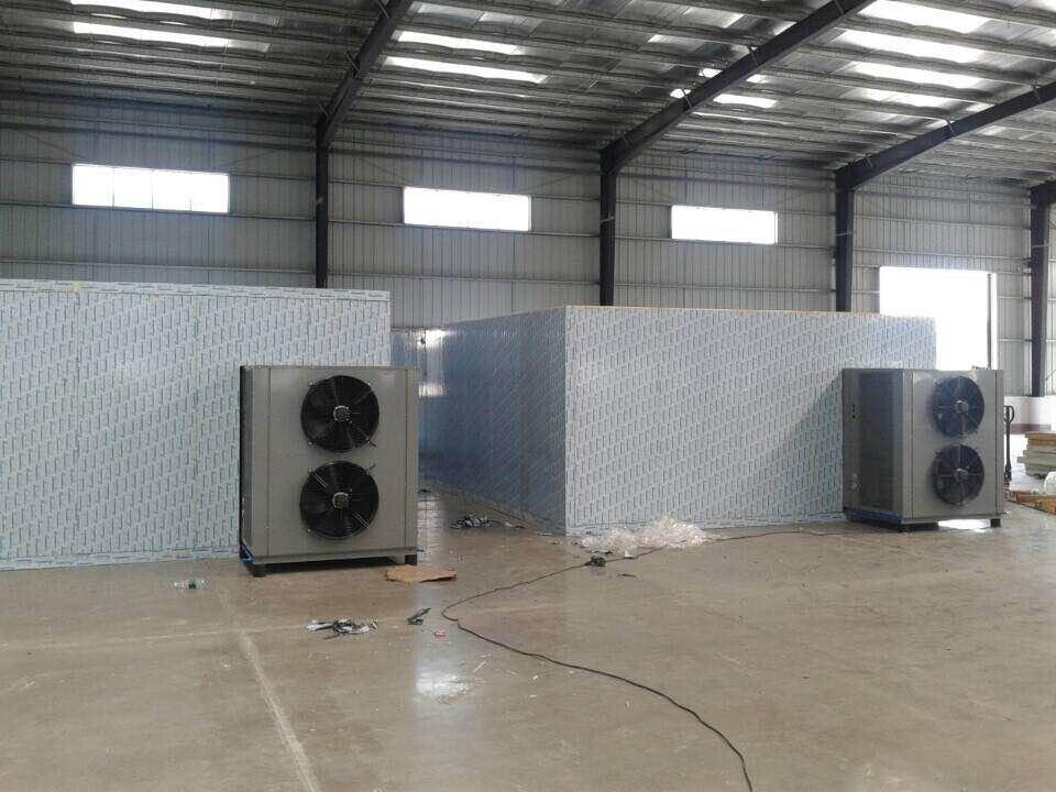 Fruit & Vegetable Processing Machines Food Dryer