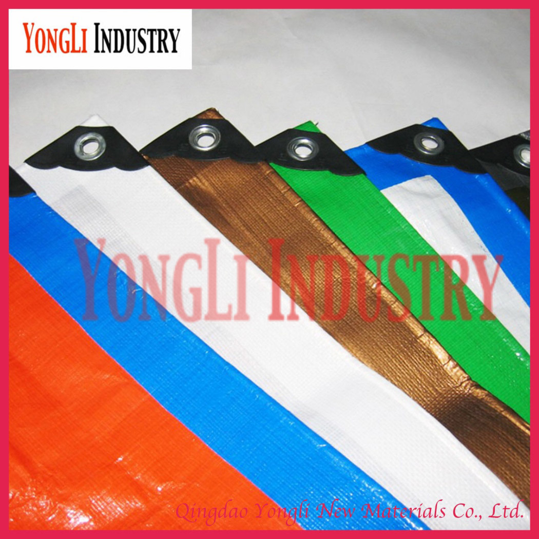 Competitive PE Tarpaulin Sheet Roll for Myanmar Market