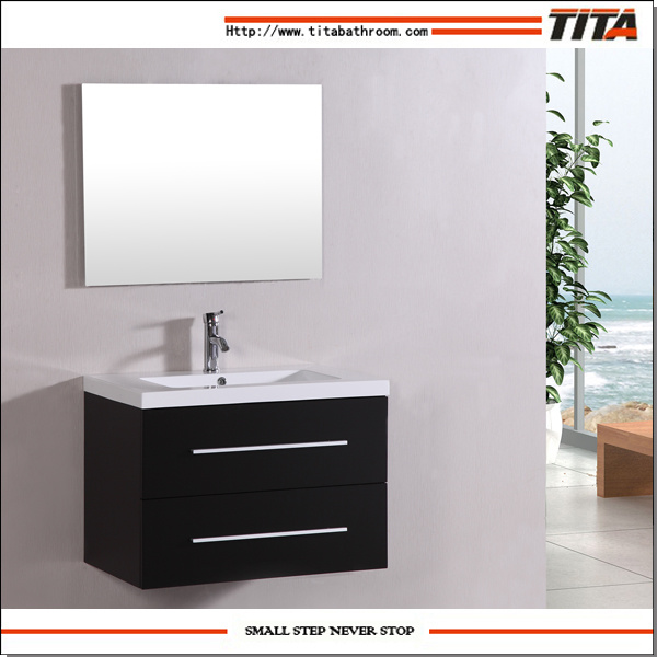 Hanging Single Sink Bathrooom Sanitary Ware (T9019B)