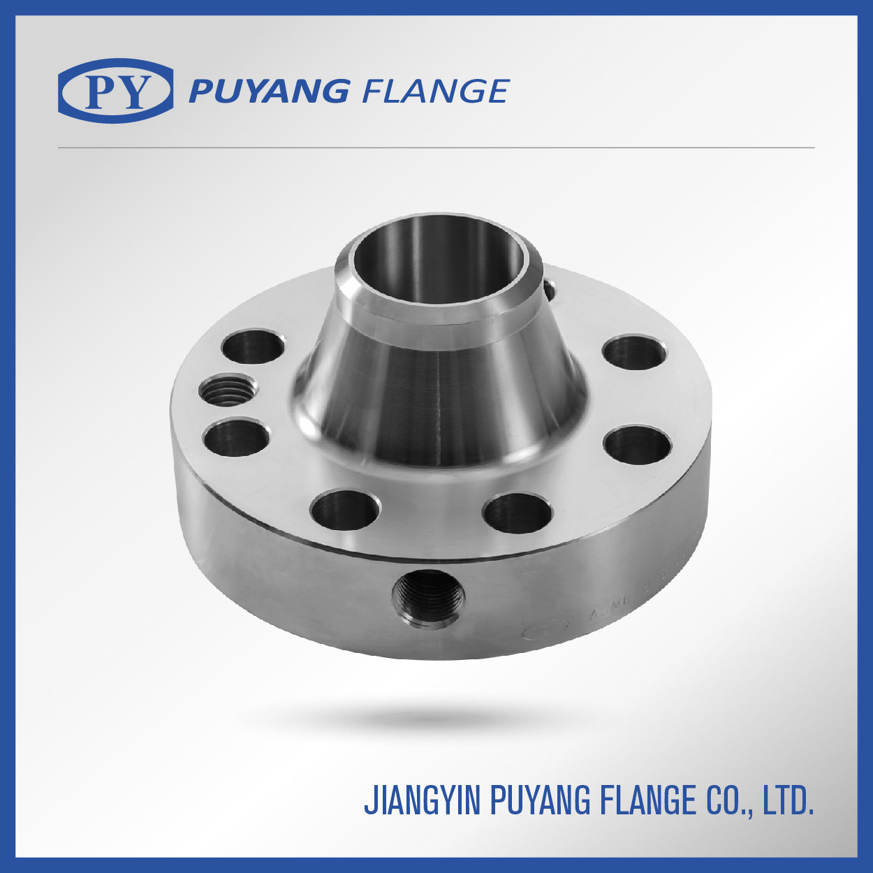 ASME Standard F304L Forged Stainless Steel Flange (PY0008)