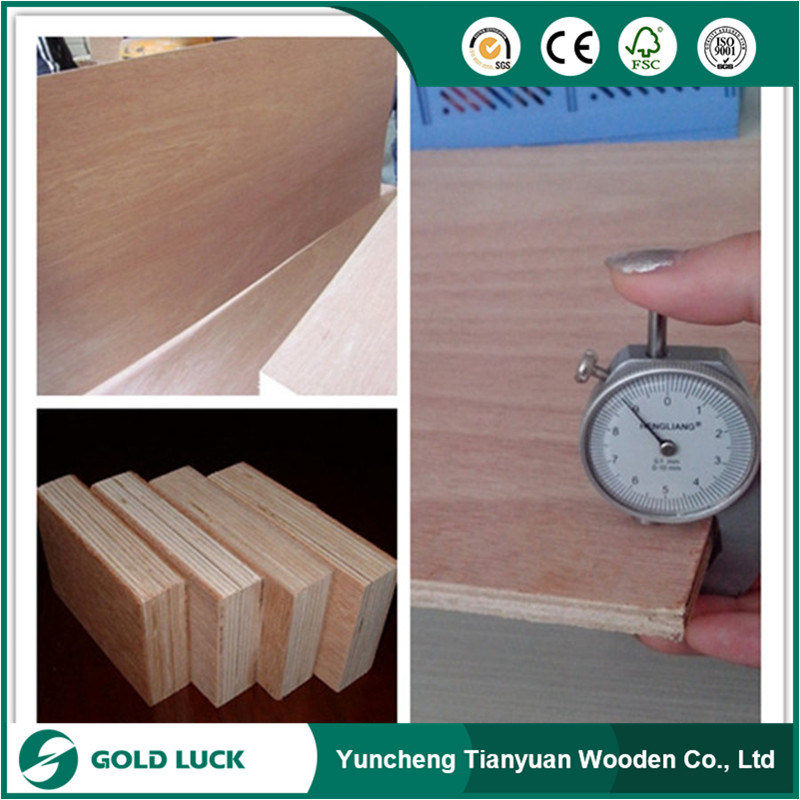 25mm Container Plywood