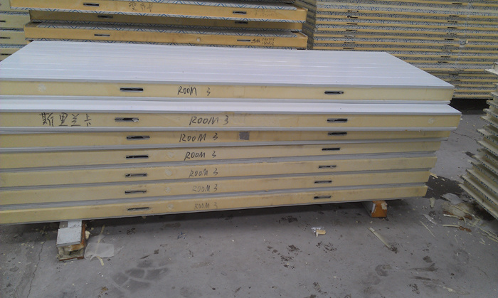 Insulated Panel with Good Density for Cold Room