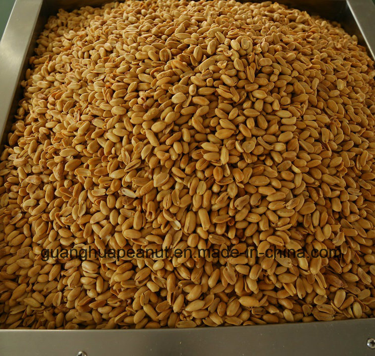 New Crop Roasted Spicy Peanut Kernels
