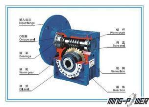 Worm Gear Reducer & Cycloidal Speed Reducer