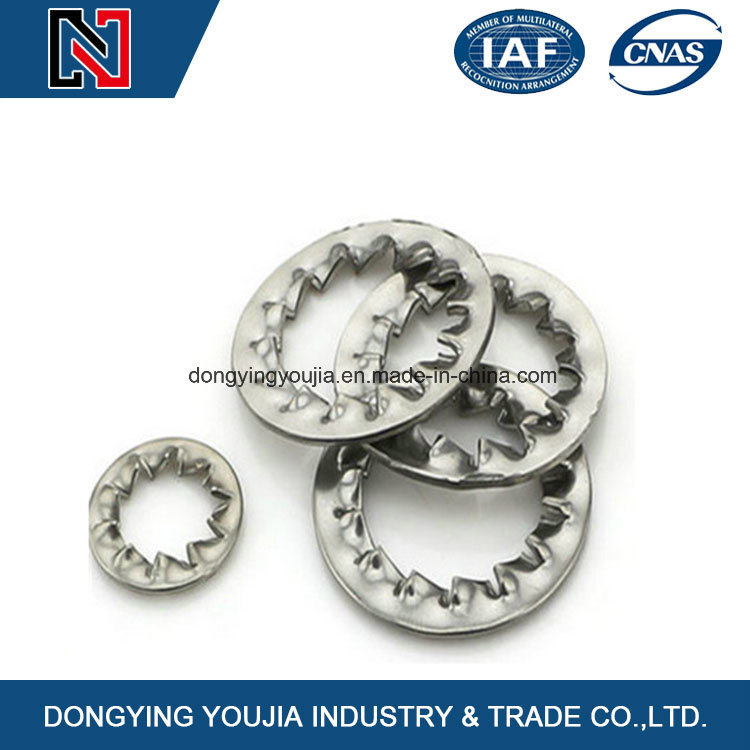Chinese High Quality Ss304/316 Stainless Steel Toothed Lock Washer
