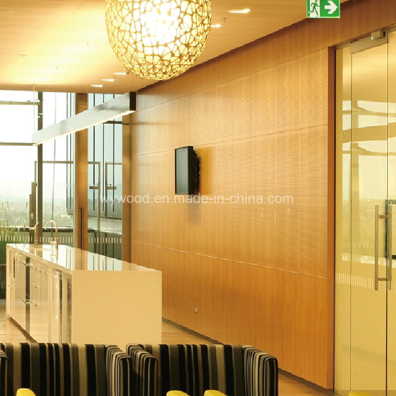 Perforated Acoustic Panel PA Series