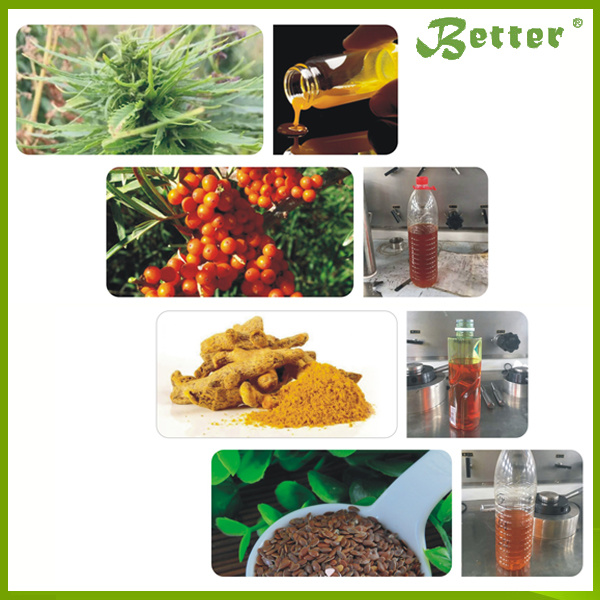 Supercritical CO2 Extraction for Seabuckthorn Seed Oil