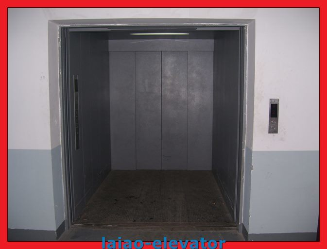 Standly Hospital Goods Cargo Lift for Sale