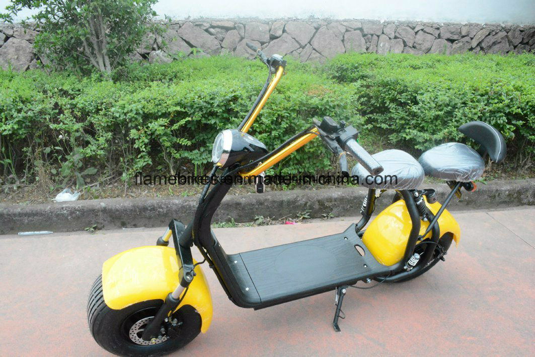 2017 Citycoco Electric Scooter Harley Style for Adult with 1000W 60V/30ah