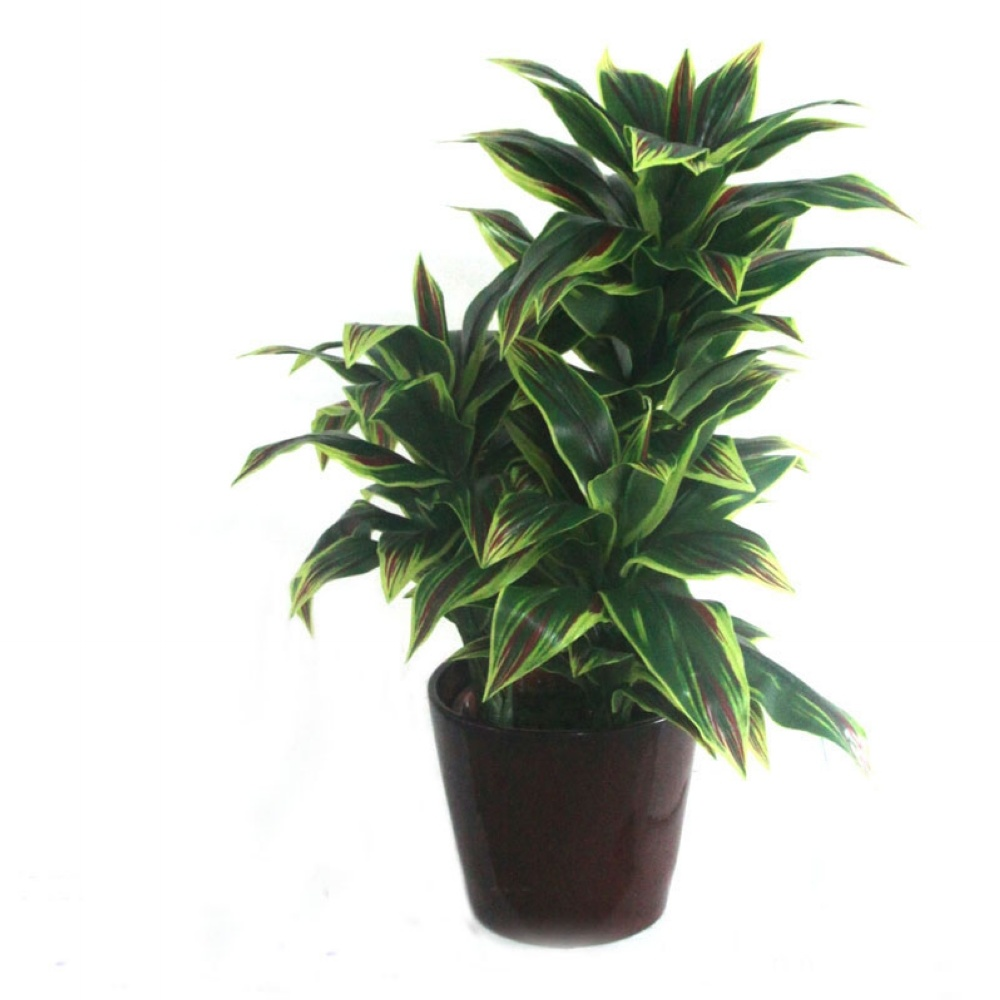 China artificial dracaena plant enjoyable likelife for Plante dracaena