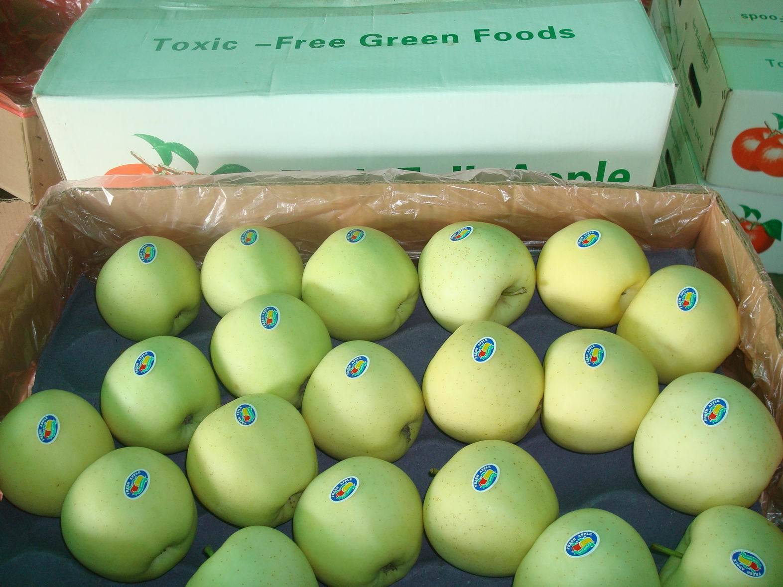 Fresh Chinese Exporting Standard Golden Apple