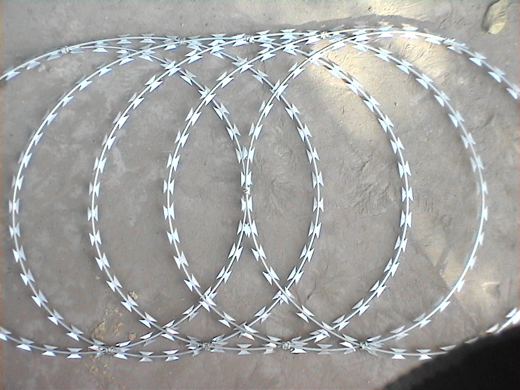 China Stainless Steel Concertina Razor Wire Photos