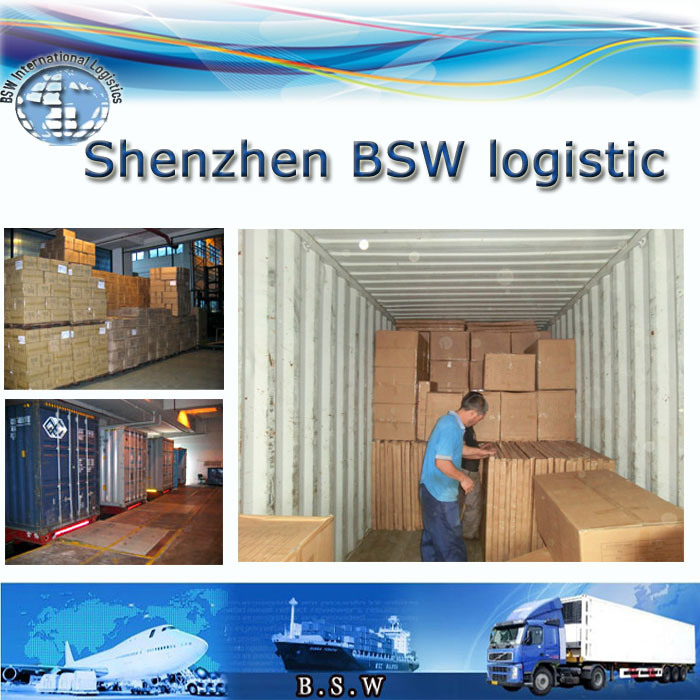 Professional Import and Export Logistic Agent for Ocean, Express, Air