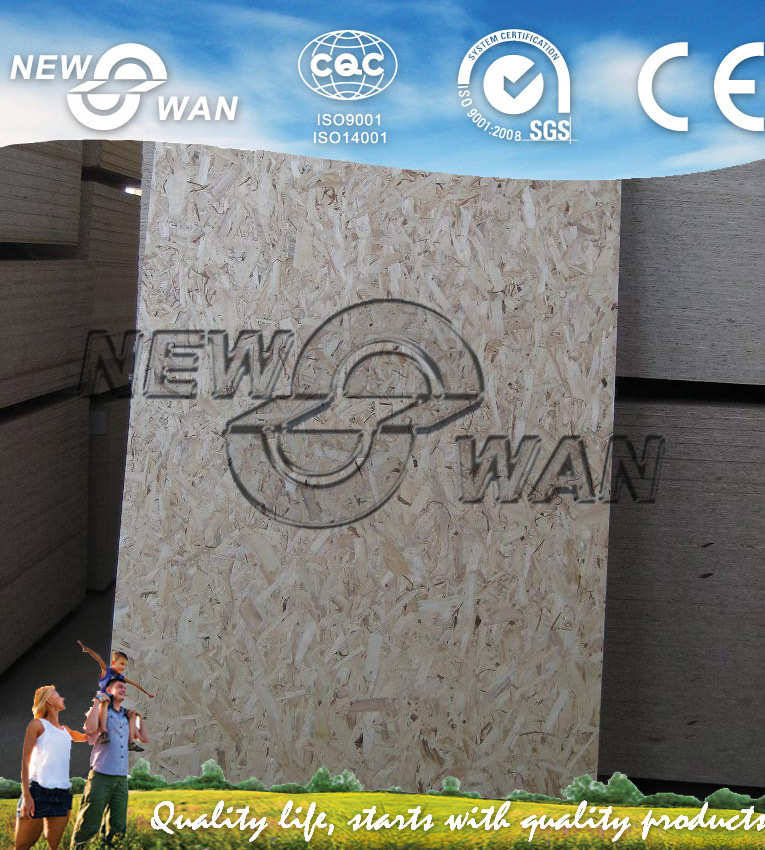 AAA Grade Decoration OSB (NOSB-0019)