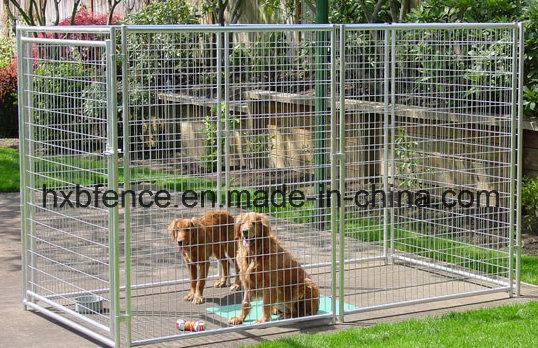 Welding Mesh Pet Safe Galvanized Dog Kennel