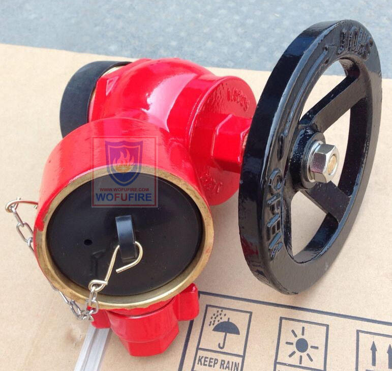 "Screwed Type 2.5"" BS336 Landing Valve"