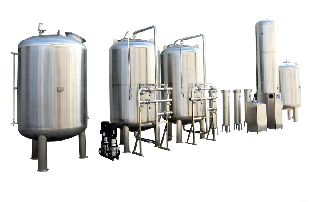 10 Tph Sanitary Water Treatment Reverse Osmosis System Plant