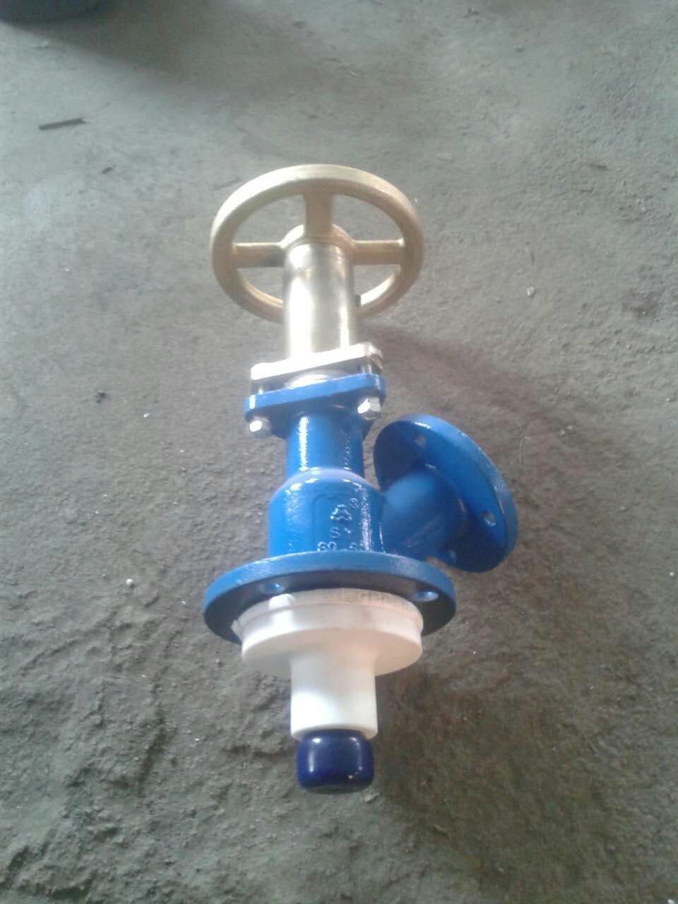 Glass Lined Bottom Flush Valve