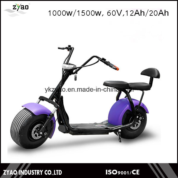 1000W 60V 12ah City Bike with Ce From China Factory