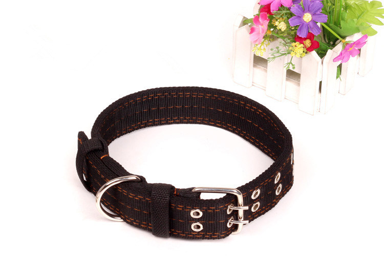Pet Products Supply Dog Leash (L006)
