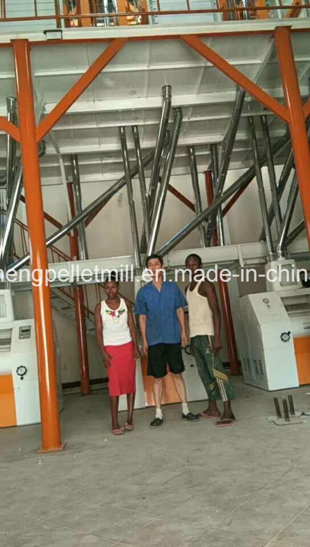 Africa Wheat Maize Corn Flour Milling Plant Complete Line