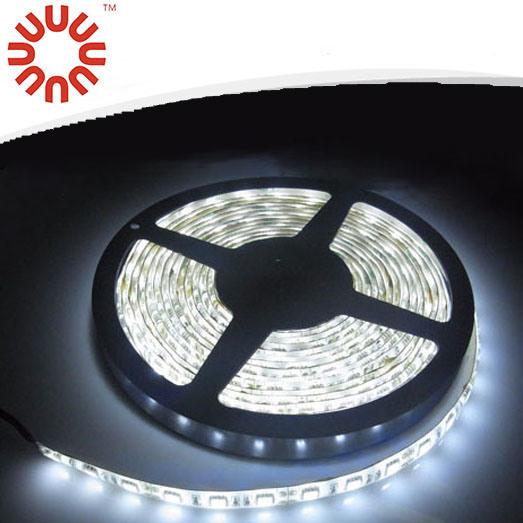 Waterproof Flexible SMD5050 LED Strip Light