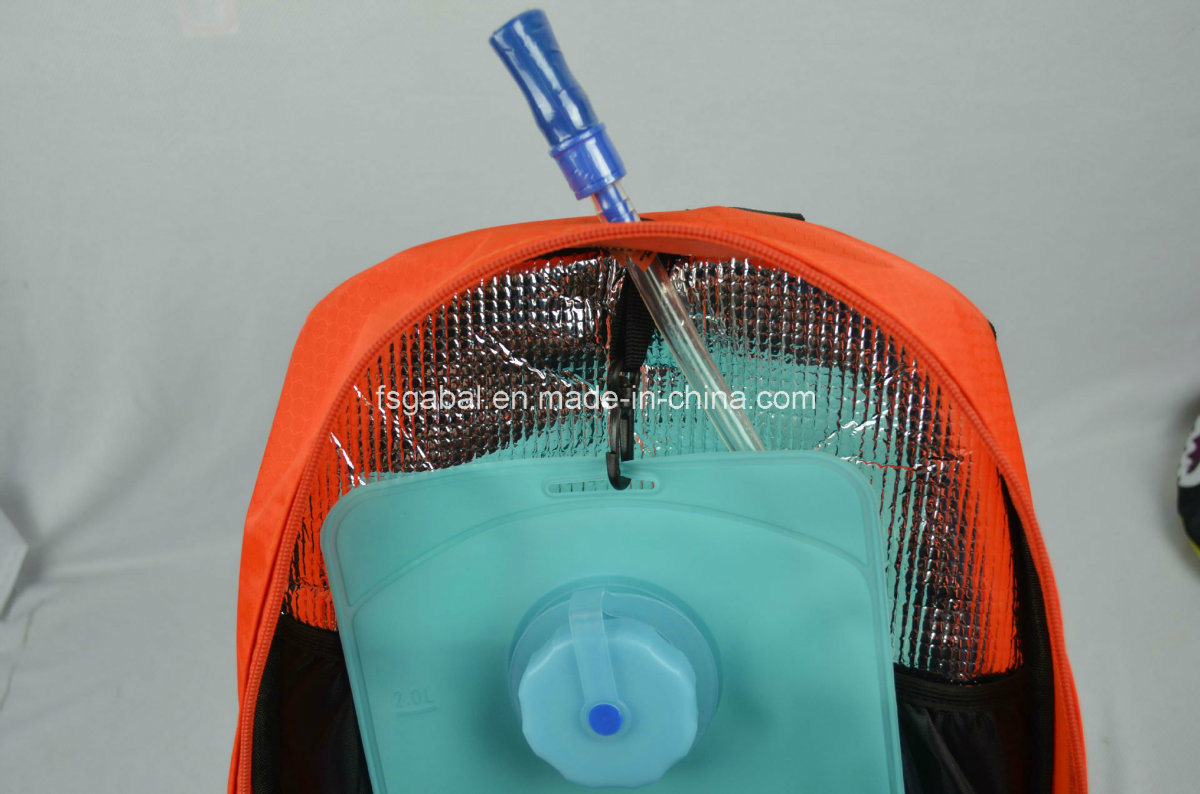 Ktm Motorycle Sports Gear Hydration Backpack with 2L Water Bag
