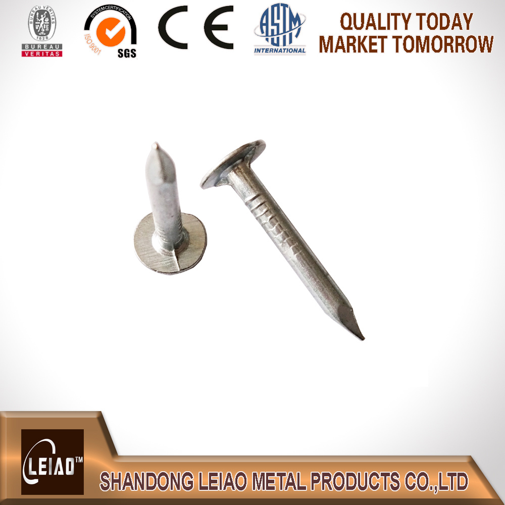 China Manufacturer Galvanized Roofing Flet Clout Nail