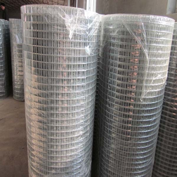 Low Carbon Galvanized Welded Wire Mesh Roll