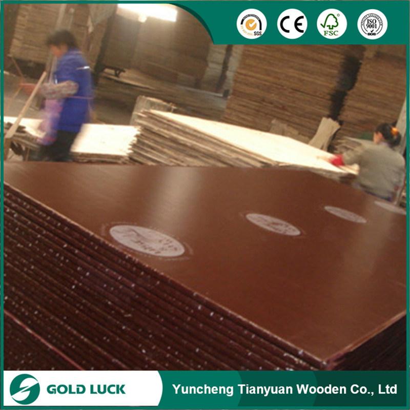 Malaysia Plywood/ Hardwood Plywood/ Film Faced Plywood / Construction Plywood